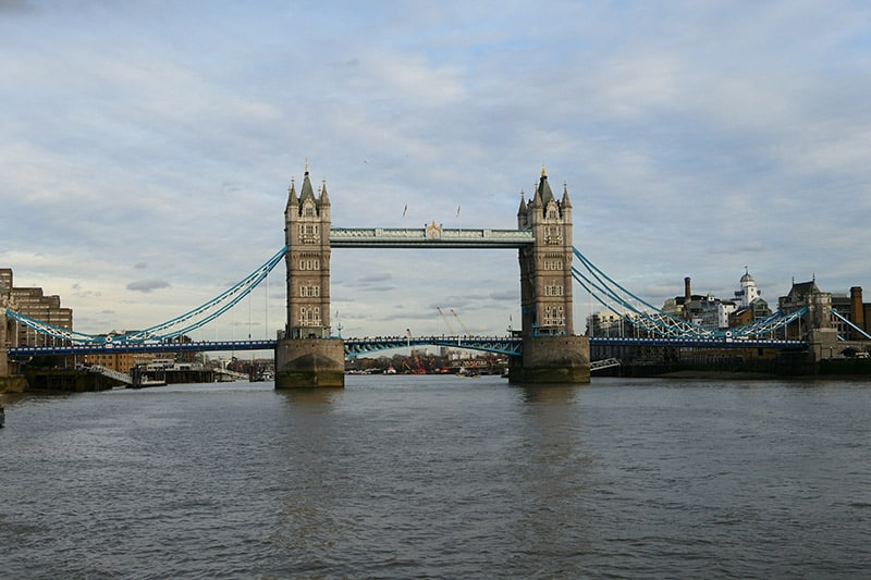 Thames River Boat Cruise